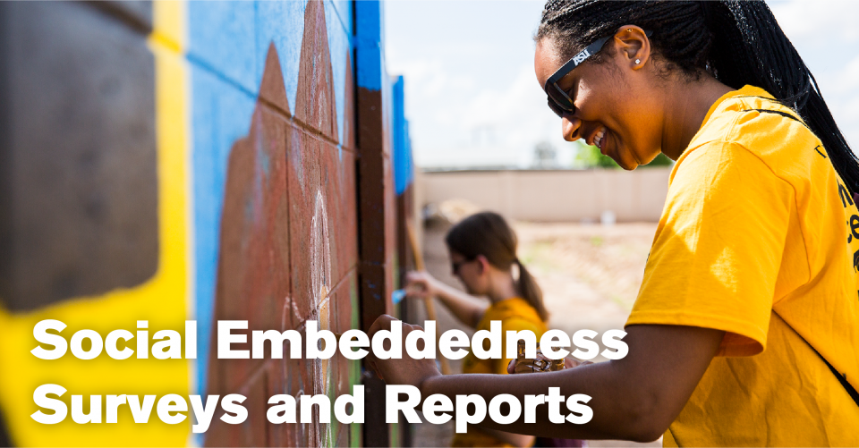 Social Embeddedness Surveys and Reports